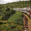 East Africa's railway project: Nyerere's dream in the hands of foreigners?