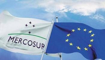 Acuerdo Mercosur-UE, ¿celebración o preocupación?